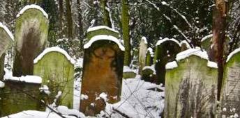 Snowny cemetery