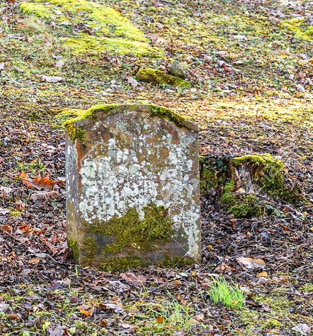 Moss covered tombstone